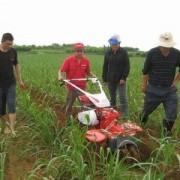 8马力链轨微耕机视频二手8码微耕机转让日本进口田园管理机