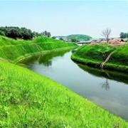 江苏维也维山:生态植生混凝土技术的开拓者
